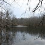 RMN Salamander Hike, March 3, 2012: Yet bigger pond. Photo by Eric Johnson.